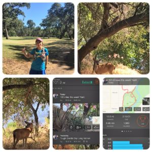Last day of running with deer and the beauty of human nature